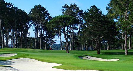 Tpc Harding Park Pga Tour Municipal Public Golf In San Francisco Ca